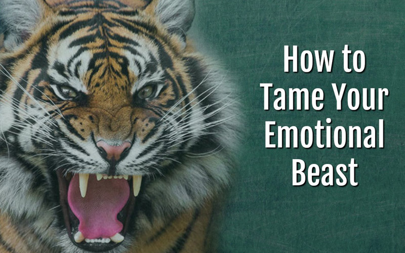 How to Control Emotions: Taming Your Inner Beast
